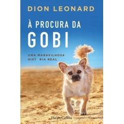 À Procura Da Gobi de Dion Leonard